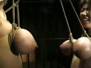 asian bdsm titty hanging
